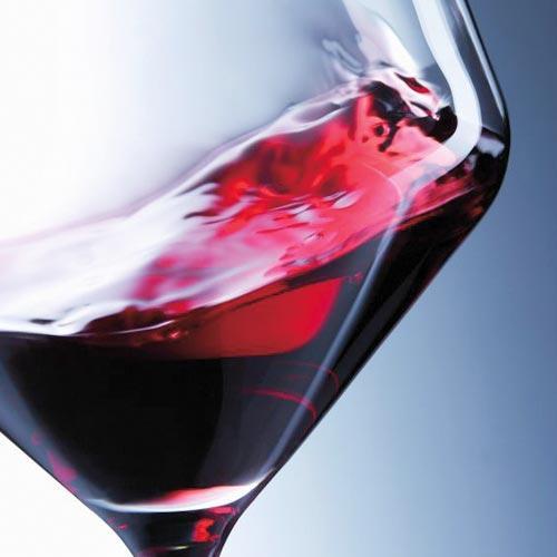 Wine & More от Schott Zwiesel