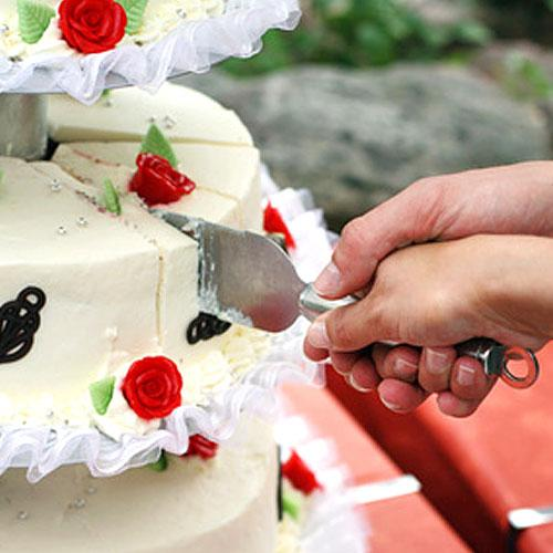 Cake and Pie Knives
