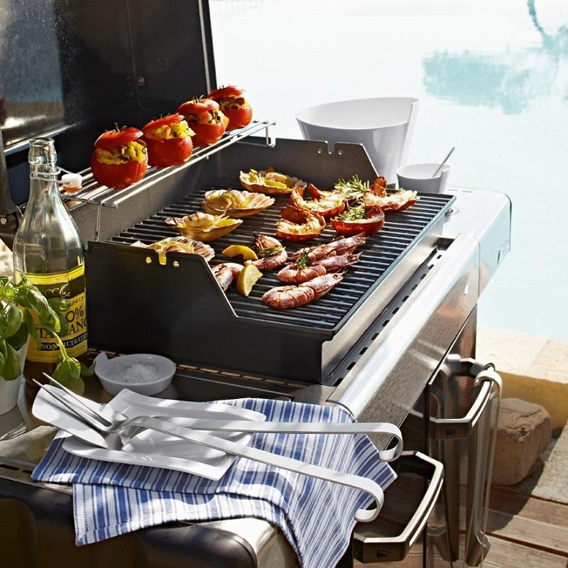 Grills and BBQ accessories