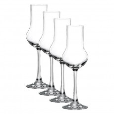 Nachtmann Vivendi Premium - Lead Crystal Obstbrand Glas Set 4-tlg. 109 ml / h: 177 mm