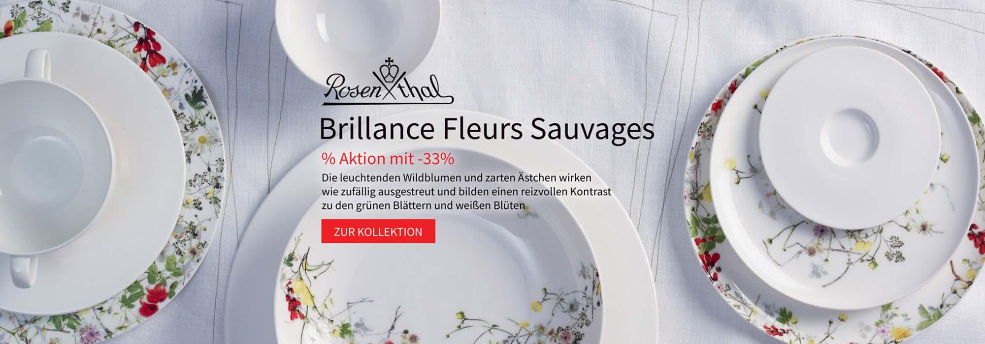 Rosenthal Selection Brillance Fleurs Sauvages